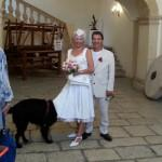 French wedding with dog